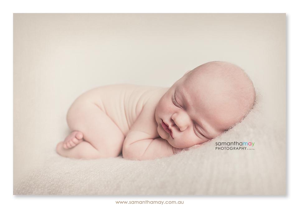 dee7da69dd016 Samantha May Photography   Perth Maternity Newborn Portraits