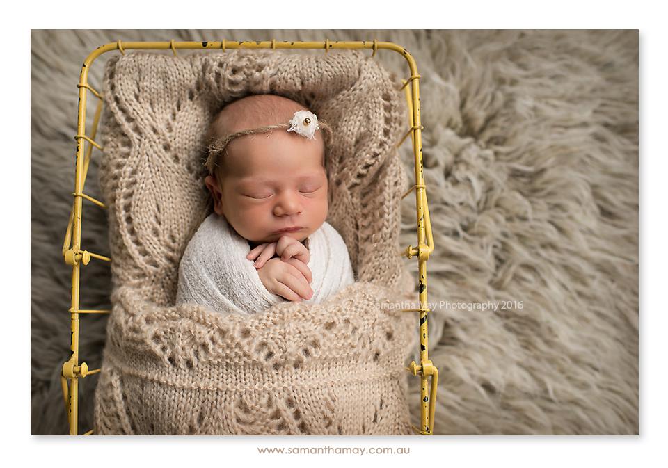 newborn in basket perth